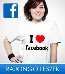 facebook3 copy